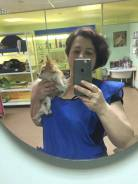 Груминг_Стрижка собак и кошек