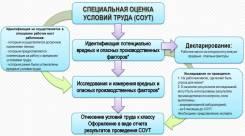 Организация в проведении специальной оценки условий труда (СОУТ)