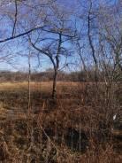 Продается участок 3,5 гектара в собственности, в с. Вл. -Александровкое. 35 000кв.м., собственность. Фото участка