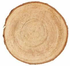 Набор срезов ели, диаметр 9-11см, толщина 5 мм, 5шт