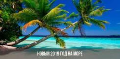 Вьетнам. Нячанг. Пляжный отдых. Новый Год во Вьетнаме - выгодно!