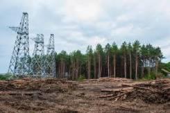 Вырубка леса под линии ЛЭП