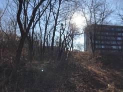 """Продается земельный участок в районе Спутника (р-н """"Лесной заимки""""). 3 589кв.м., собственность, электричество. Фото участка"""