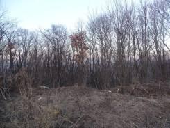 Продается земельный участок, 52 сотки (Возможна продажа от 10 соток). 5 190кв.м., собственность. Фото участка