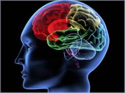 Раскрытие феноменальных способной мозга. 2 ступень.