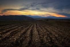 Сдам в аренду земли сельхоз назначения
