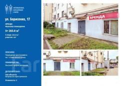 Помещение с отдельным входом ул. Борисенко 17. 264кв.м., улица Борисенко 17, р-н Борисенко