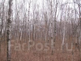 Продаю 2 смежных участка в курортной зоне Владивостока. 78 317кв.м., собственность, электричество, вода, от агентства недвижимости (посредник). Фото...
