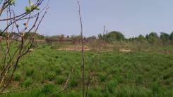 Продам земельный участок 15 соток ЕАО пос. Николаевка. 1 500кв.м., собственность, аренда, электричество