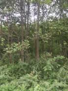 Продается земельный участок под магазин в с. Хмыловка. 900кв.м., аренда, электричество. Фото участка