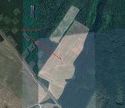 Продается земельный участок сельхозназначения. Площадь 43 га. 430 000кв.м., собственность, электричество