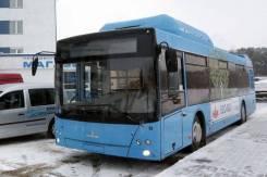 МАЗ 203965. Автобус , 105 мест. Под заказ
