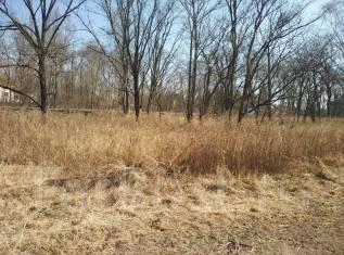 Срочно продам земельный участок в п. Тавричанка, ул. Радиостанция-1. 1 500кв.м., собственность, от частного лица (собственник). Фото участка
