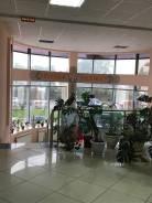 Нежилое помещение в бизнес-центре «Новый квартал». Улица Карла Маркса 96а, р-н Центральный, 47,0кв.м.