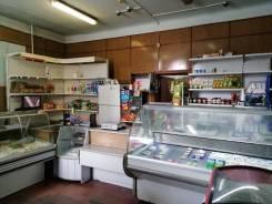 Продам действующий продуктовый магазин на Постышева