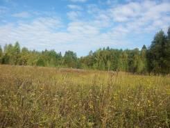 Продаётся участок 6.3 га (СНТ, ДНП) в Переславском районе. 63 000кв.м., собственность, электричество