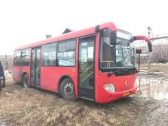 Golden Dragon. Автобус Bus, 17 мест