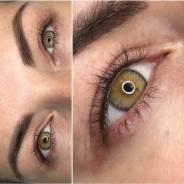 Базовое индивидуальное обучение перманентному макияжу (татуажу) бровей