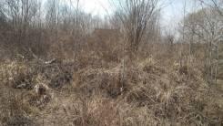 Участок под ИЖС в с. Прохладное. 1 500кв.м., собственность, электричество. Фото участка