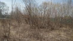 Земельный участок под ИЖС в с. Прохладное. 1 500кв.м., собственность, электричество. Фото участка