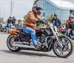 Harley-Davidson V-Rod Muscle VRSCF. 1 247куб. см., исправен, с пробегом. Под заказ