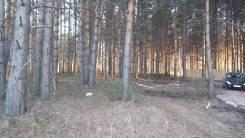 Продам земельный участок с вековым сосновым лесом в 5 минутах от город. 12кв.м., собственность, электричество, вода