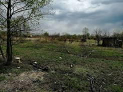 """Земельный участок в СНТ """"Ольха"""". 830кв.м., собственность. Фото участка"""