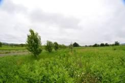 Земельный участок в Южном районе. 1 818кв.м., собственность. Фото участка