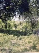 Земельный участок в Безверхово. 3 000кв.м., собственность. Фото участка