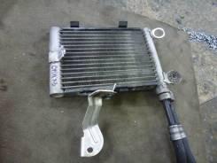 Радиатор масляный. BMW X3, E83 N52B30