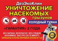 Уничтожение вредителей, тараканов, крыс, мокриц, ос, шершней и грызунов