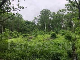 Продам земельный участок. 1 500кв.м., собственность. Фото участка