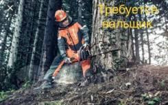 Помощник вальщика леса. Хабаровский край