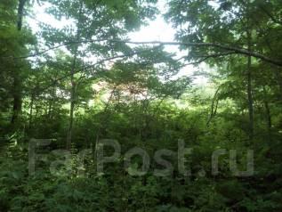 Продам участок 2 522 кв. м. в с. Сосновка. 2 522кв.м., собственность, аренда, вода. Фото участка