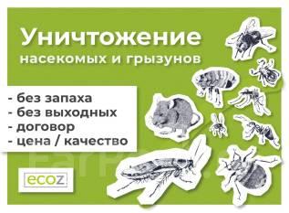 Уничтожение тараканов, клопов, клещей, крыс с гарантией, 100% результат