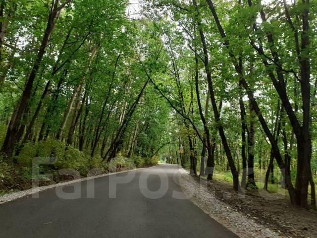 Продам земельный участок в с. Воронежское-2 (район Зоосада). 2 000кв.м., собственность, электричество