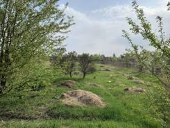 Продается земельных участок в селе Спасском 43 сотки. 4 300кв.м., собственность, аренда, электричество. Фото участка