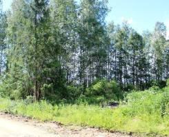 Предлагаем к продаже земельный участок. 1 000кв.м., собственность. Фото участка
