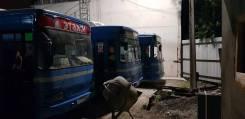 Daewoo BS106. Продам автобусы Daewoo BS-106, 32 места