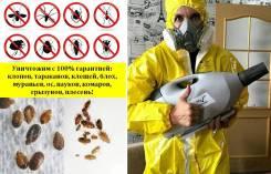 Уничтожение насекомых, тараканов, клопов, крыс, клещей с гарантией
