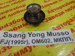 Термостат Ssang Yong Musso Ssang Yong Musso 1993.09.14
