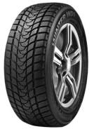 Delinte Winter WD1, 205/60 R16 96H