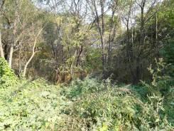 Продам земельный участок 5,9 га п. Таежный. 59 500кв.м., собственность. Фото участка