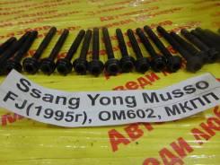 Болт головки блока цилиндров Ssang Yong Musso Ssang Yong Musso 1993.09.14