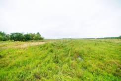 Продам земельный участок в с. Князе - Волконка. 57 066кв.м., собственность, электричество