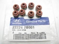 22224-2B001 Колпачок маслосъёмный выпускной Hyundai/Kia