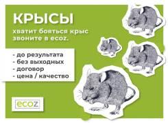 Дератизация - уничтожение борьба с крысами и другими грызунами!
