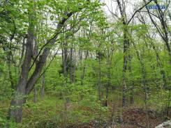 Продам земельный участок ИЖС. 1 200кв.м., собственность, электричество. Фото участка