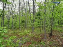 Предлагаем к продаже земельный участок ИЖС. 1 200кв.м., собственность, электричество. Фото участка