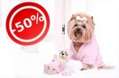 50% скидка на комплекс услуг по грумингу для собак и кошек
